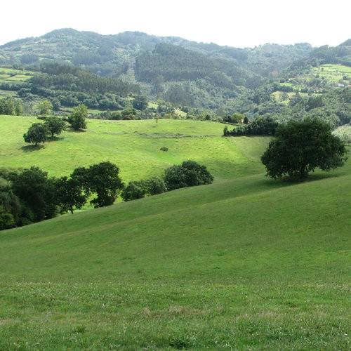 Spain. Asturias. Green hills near Villaviciosa